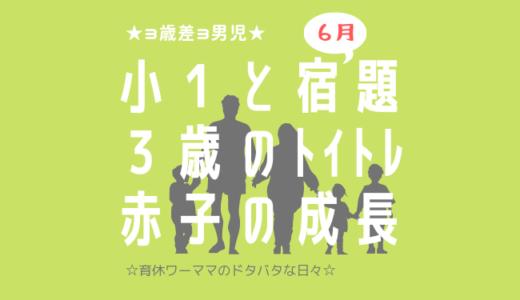 【子ども3人】小1の宿題と3歳トイトレと新生児との育休生活